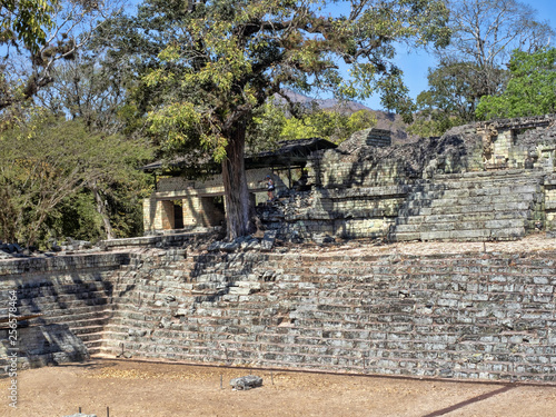 Fotografie, Obraz  Copan archaeological site of Mayan civilization, not far from the border with Guatemala