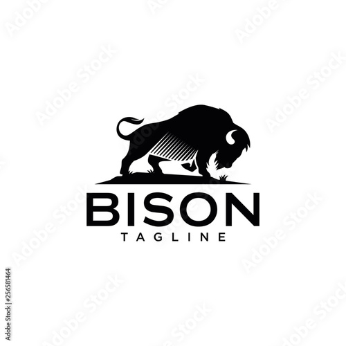 Fototapeta Bison Logo Templates