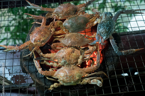 Fotografie, Obraz  blue swimming crab grilled