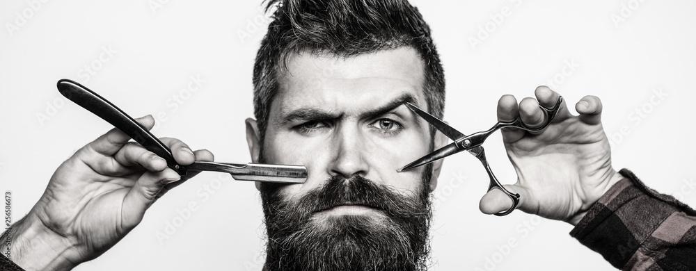Fototapeta Bearded man, bearded male. Portrait of stylish man beard. Barber scissors and straight razor, barber shop. Vintage barbershop, shaving.
