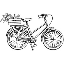 Black And White Hand Drawn Illustration Of Bicycle