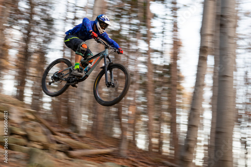 Fotografie, Obraz  Mountainbiker rides in autumn forest