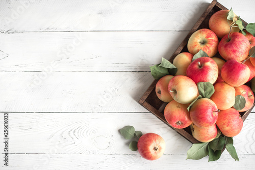Fotografie, Obraz  Red apples in wooden box