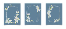 Set Of Card With Agapanthus Fl...
