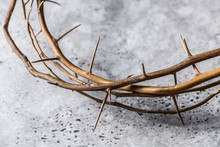 Close Up Crown Thorn On Rustic Cement Surface