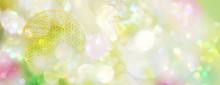 Banner / Hintergrund Blume Des Lebens In Zartem Frühlingslicht