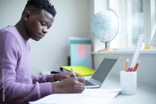 Teenage Boy Sitting At Desk Doing Homework Assignment On Laptop Canvas Print