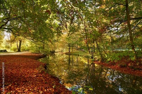 Fotografie, Obraz  Englischer Garten München im Herbst