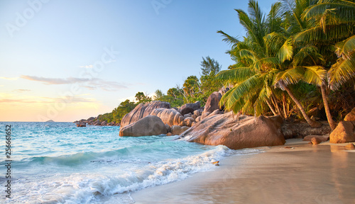 Photo Stands Blue sky Praslin Anse Lazio