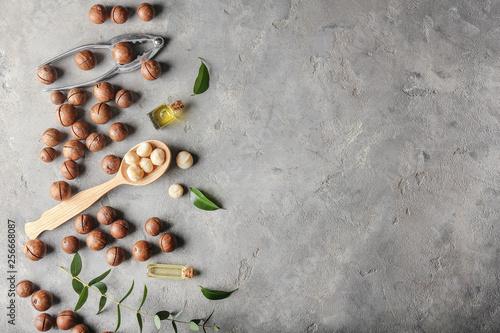 Fotografie, Obraz Macadamia nuts with oil on grey background