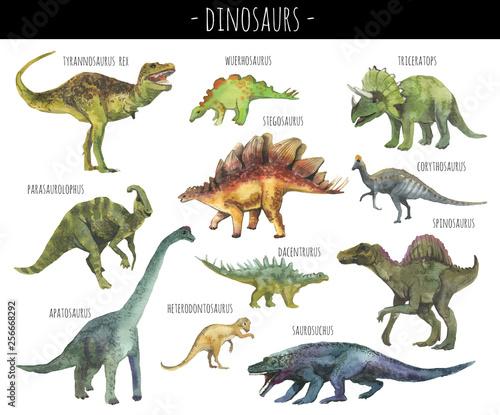 Fototapeta Watercolor set of hand drawn realistic dinosaurus
