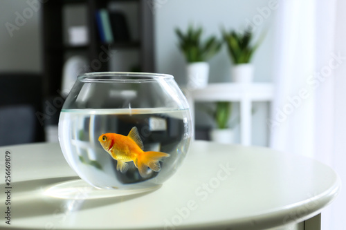 Photo Glass fishbowl on table