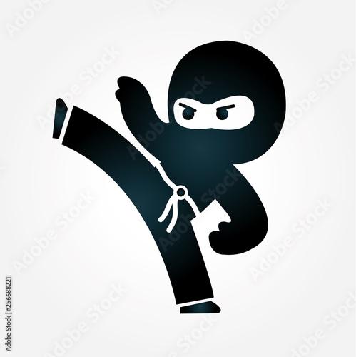 Fotografía Ninja