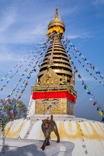 Fotografia  Swayambhunath or Monkey temple is an ancient religious architecture atop a hill