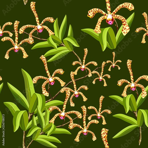 Spoed Foto op Canvas Draw Scorpion Orchids Sensual Exotic Flowers Vector Seamless Pattern