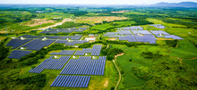 Solar Photovoltaic Panel With Aerial Green Vegetation Base