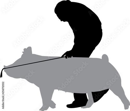 Fotografie, Obraz  Pig Show Silhouette Shape Vector