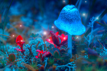 A fantastic glowing mushroom in a mysterious forest. Mystic light flying fairy lights. Fabulous image. Border art design. soft focus, blurred