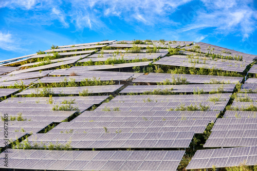 Photo Solar photovoltaic panels built on hillsides are dust and weeds