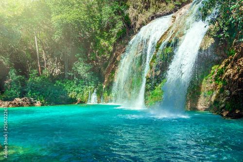 Poster Trees Waterfall, Chiflon Cascades, Chiapas, Mexico