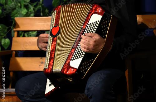 man playing accordion, hands Tapéta, Fotótapéta