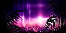 Dark Background With Colorful Bokeh Of Tropical Leaves. Night View, Gradient And Abstract Bokeh Light. Magic Twinkling Sparkles.