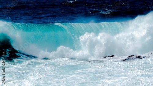 Foto auf Gartenposter Wasser Grande vague dans l'océan
