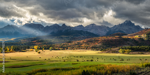 Autumn at a cattle ranch in Colorado near Ridgway - County Road 9	- Ralph Lauren Wallpaper Mural
