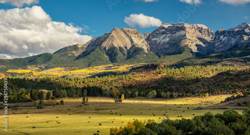 Photo Autumn at a cattle ranch in Colorado near Ridgway - County Road 9	- Ralph Lauren