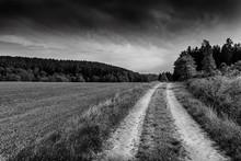 Rural Road In Czech Countryside