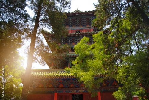Obraz na plátně Shaolin is a Buddhist monastery in central China.