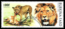Postage Stamp. Big Cats. Lion.