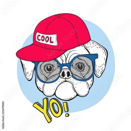 1b19c0141fc0e Dog pug in blue sunglasses and a red cap with the inscription cool. And the  slogan YO. Vector illustration for t-shirt design.