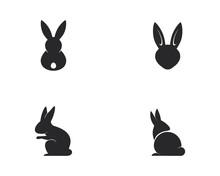 Rabbit Logo Template Vector Ic...