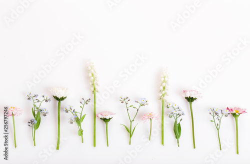 Poster Fleuriste Festive flower composition on the white wooden background. Overhead view