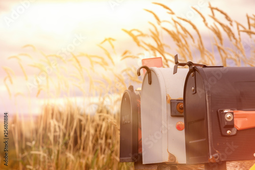 Fototapeta  Retro mail boxes against long grass background