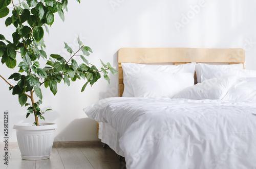 Slika na platnu Bedroom interior with bed and big indoor flower