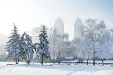 A Winter Scene In Dnipro. Winter City, Frosty Morning. Ukraine