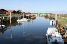 French Fishing Port In Gujan Mestras In Bassin D'Arcachon South West France