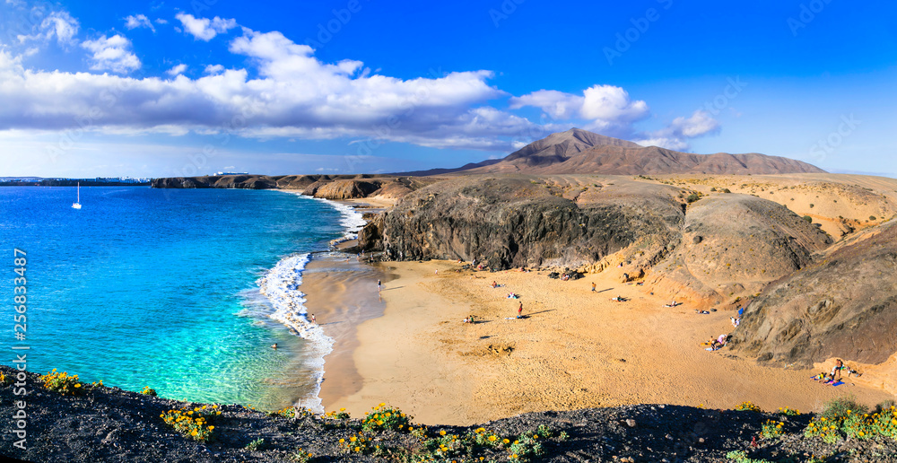 Fototapety, obrazy: Beautiful volcanic nature and beaches of Lanzarote.Papagayo beach. Canary islands, Spain