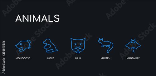 Obraz na plátně 5 outline stroke blue manta ray, marten, mink, mole, mongoose icons from animals collection on black background