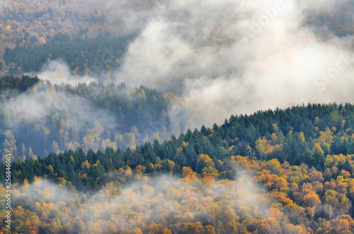 ciepla-zlota-jesien-w-gorach-poludniowego-uralu-swietny-czas-dla-fotografow-i-artystow