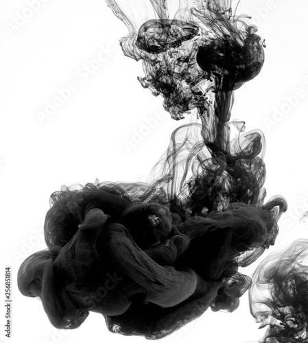 Fototapety, obrazy: Black dye underwater
