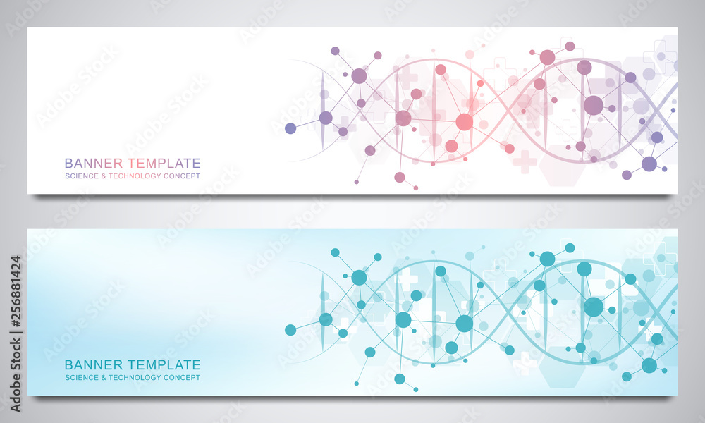 Fototapeta Banners and headers for site with DNA strand and molecular structure. Genetic engineering or laboratory research. Abstract geometric texture for medical, science and technology design.