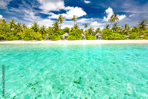 Wall Murals Green coral Maldives island beach scene, tropical landscape with green palm trees and blue sea under blue sky. Exotic travel destination concept, summer vacation, beach holiday