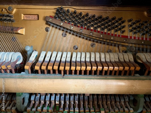 Inner workings of a piano: hammers, strings and damper - 256887287