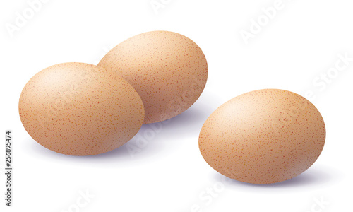 Canvas Print Three Brown Eggs Isolated