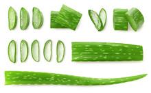Fresh Sliced Aloe Vera Leaf