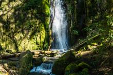Soda Creek Falls In Cascadia State Park Near Sweet Home, Oregon