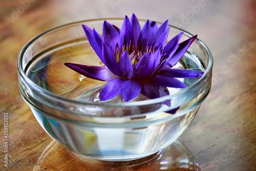 Deurstickers Waterlelies Lotus flowers in a glass of water used to decorate the table